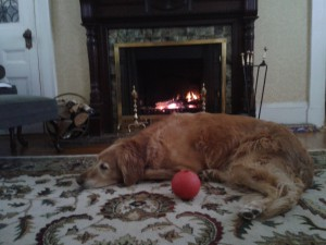 Woody ball fireplace